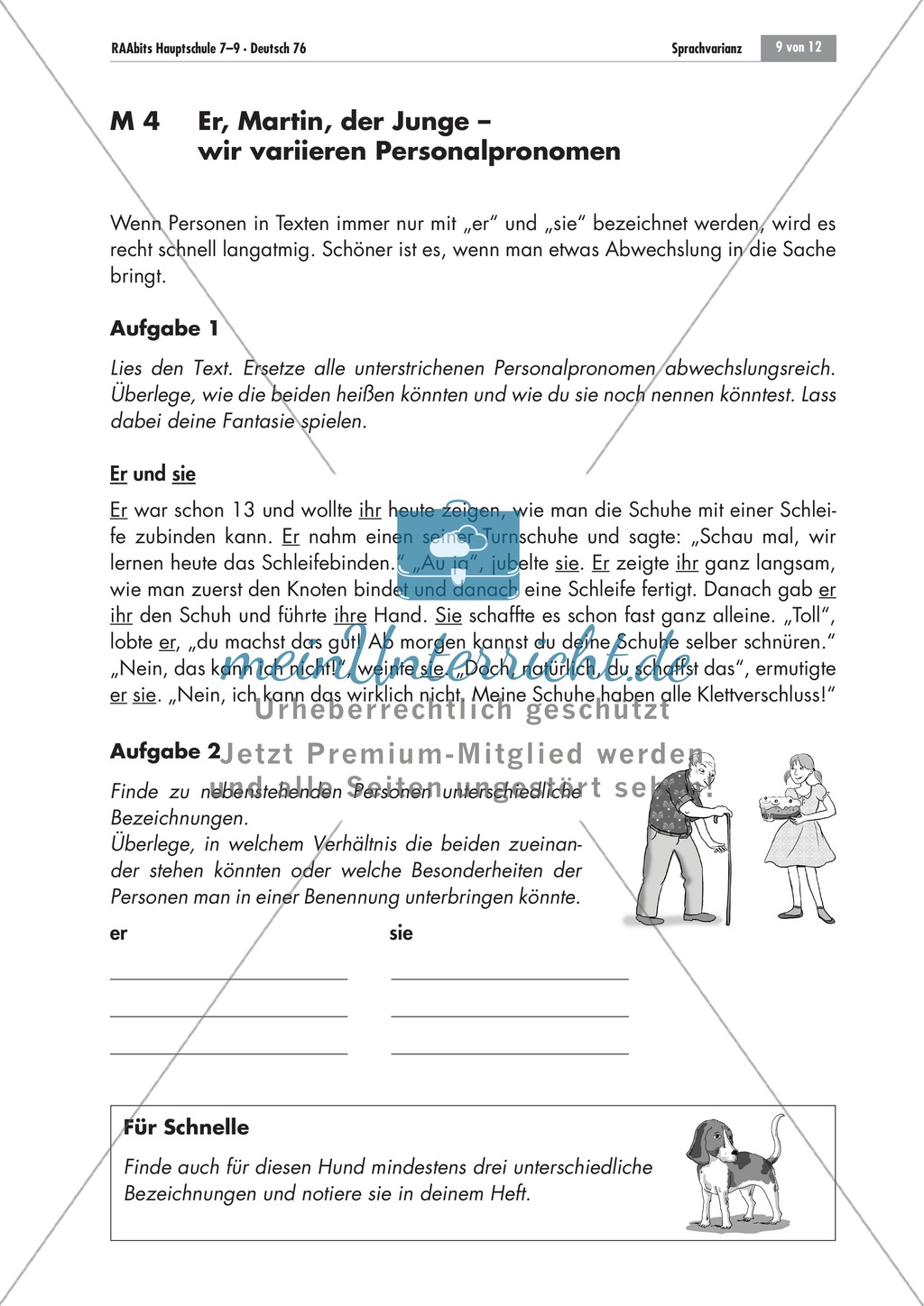 Personalpronomen variieren Preview 0