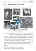 Tierbeschreibungen lesen und Bildern zuordnen + Vermisstenanzeige schreiben Preview 1