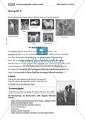 Tierbeschreibungen lesen und Bildern zuordnen + Vermisstenanzeige schreiben Preview 2