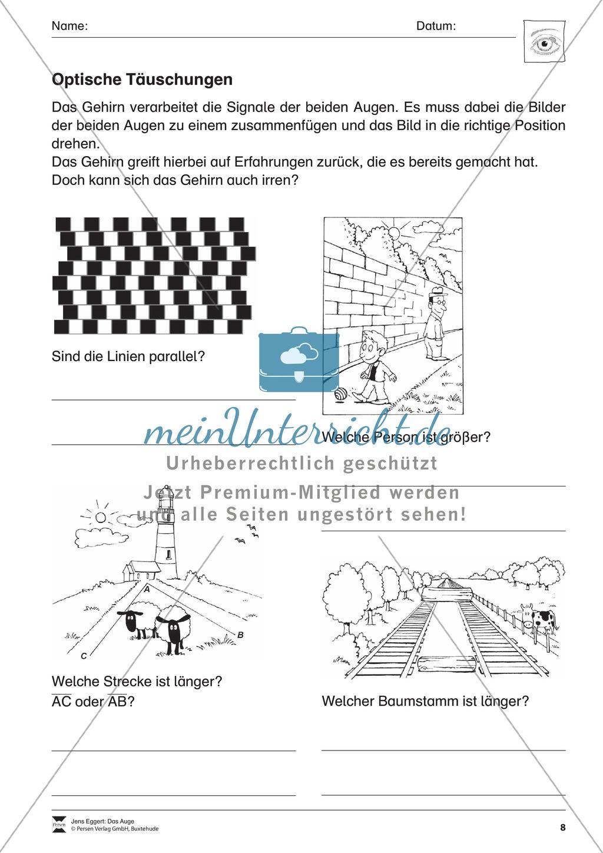 Tolle Täuschungen Arbeitsblatt Bilder - Mathe Arbeitsblatt ...