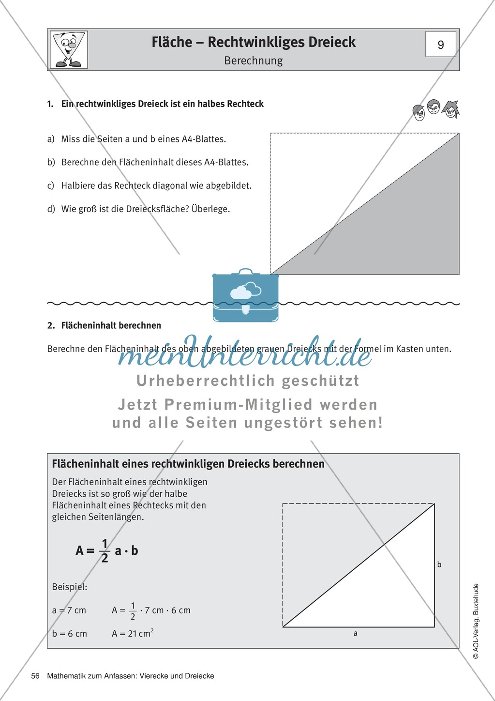 Umfang und Flächeninhalt von rechtwinkligen und allgemeinen Dreiecken Preview 3