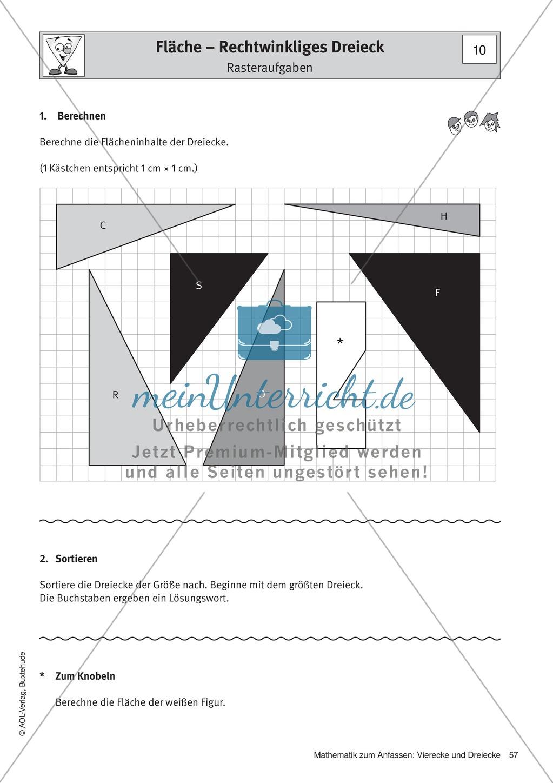 Umfang und Flächeninhalt von rechtwinkligen und allgemeinen Dreiecken Preview 4