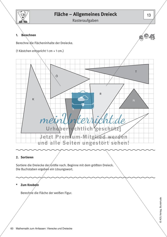 Umfang und Flächeninhalt von rechtwinkligen und allgemeinen Dreiecken Preview 7