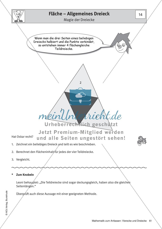 Umfang und Flächeninhalt von rechtwinkligen und allgemeinen Dreiecken Preview 8