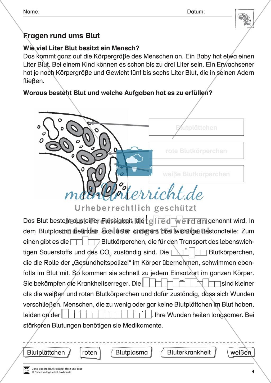 Nice Blut Arbeitsblatt Component - Kindergarten Arbeitsblatt ...