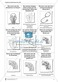 Fragekarten zum Thema Blutkreislauf, Herz und Blut Thumbnail 1