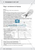 Modelle zu den Eigenschaften von Flugzeugen Preview 2