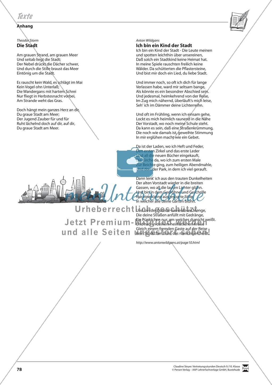 Grundlagen und Überblickswissen zur Gedichtinterpretation Preview 7
