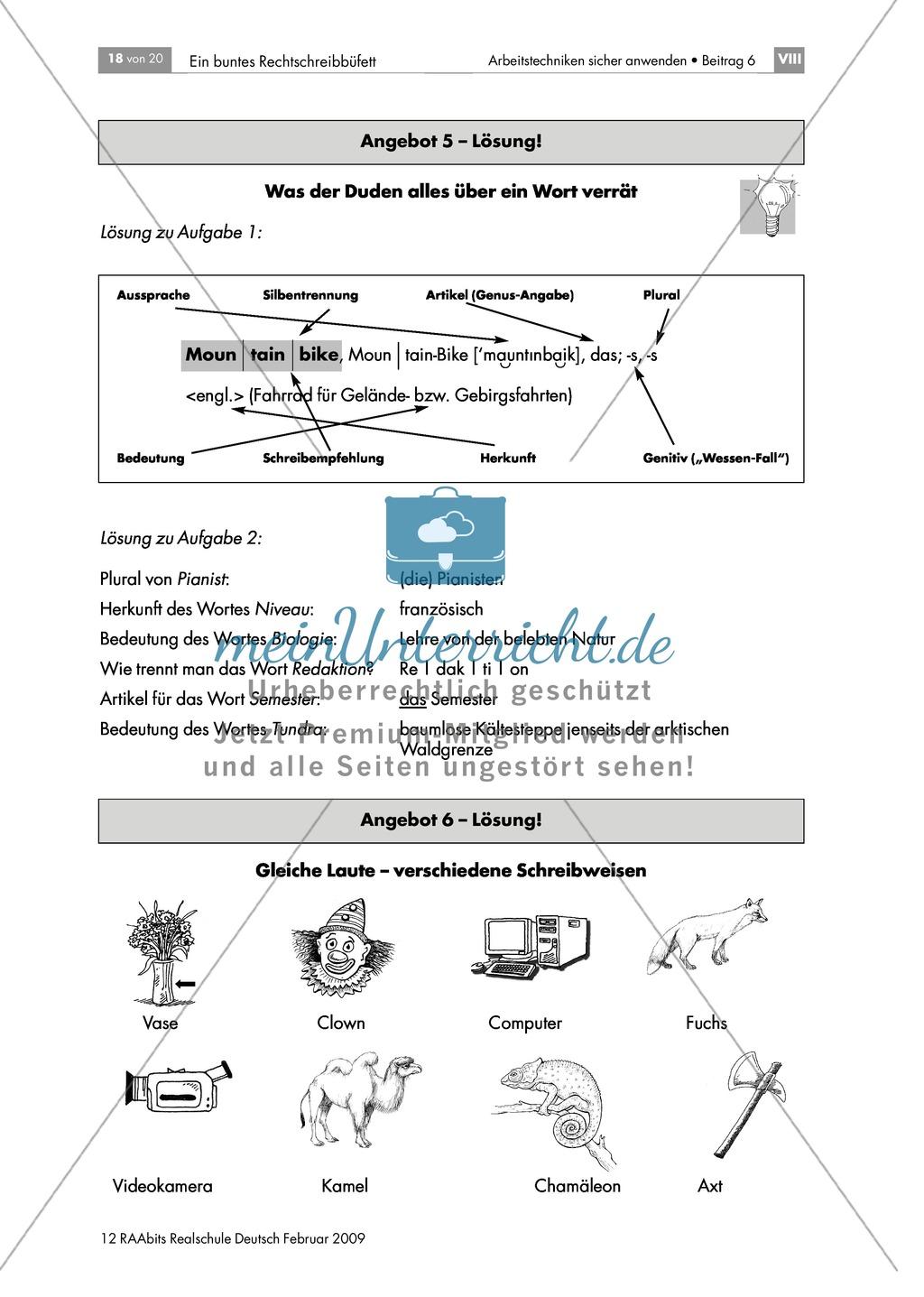 Lerntheke zur Arbeit mit dem Wörterbuch: Angaben zu Herkunft, Bedeutung, Pluralbildung, Trennung und Artikeln von Wörtern machen können Preview 1