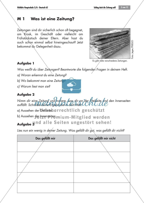 Die Zeitung als Informationsmedium: Struktur + Inhalt + Verfassen von Zeitungsartikeln Preview 0