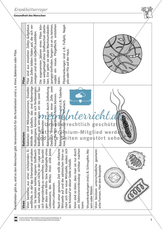 Krankheitserreger (Virus und Bakterium) Preview 0