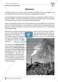 Der Aufbau von Biomasse Preview 1