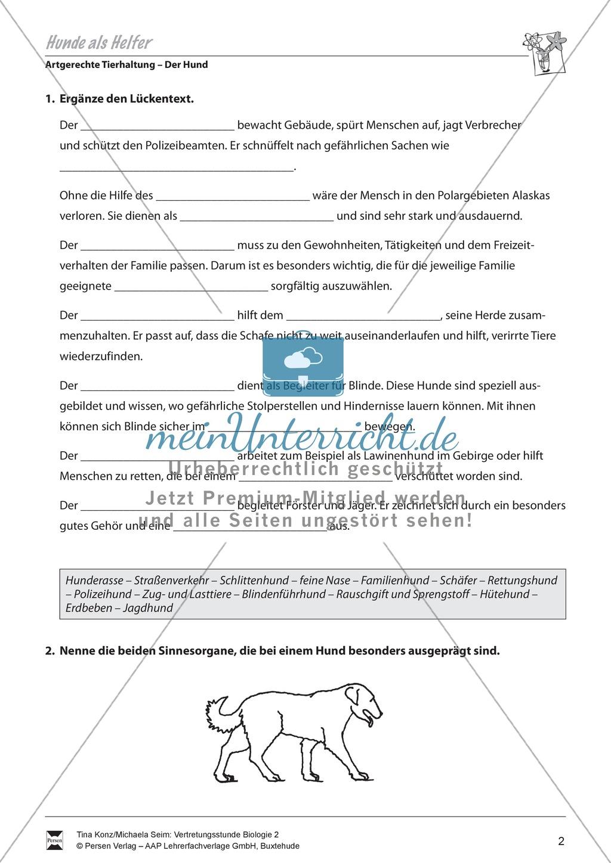 Artgerechte Tierhaltung: Nutztier Hund, Hunde als Helfer ...