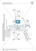 Artgerechte Tierhaltung: Die Sprache des Hundes: Körperhaltung - Vertretungsstunde Preview 1