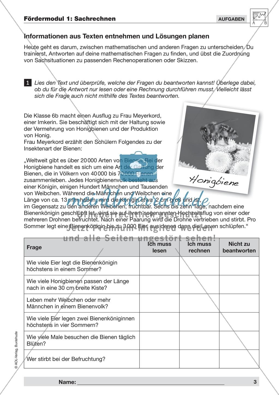 Strategien zum Umgang mit Textaufgaben und Sachrechnen mit ...