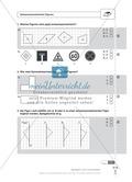 Schnelltest zur Erfassung des Lernstands im Bereich Spiegelung, Mathematik-Führerschein mit Selbstkontrolle Preview 1