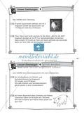 Karteikarten mit Aufgaben aus dem Themenfeld lineare Gleichungen, zur Selbstkontrolle Preview 3