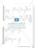 Übungen zu quadratischen Gleichungen Preview 5