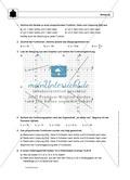 Funktionen: Eigenschaften und Steigung von proportionalen Funktionen - Infotexte + Aufgaben + Lösungen Preview 6