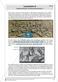 Das alte Rom - Stationenlernen. Thumbnail 16