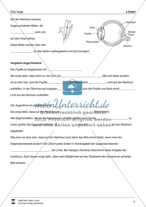 Optik - Bilderzeugung bei der Sammellinse: Vorlage Versuchsprotokoll + Aufgaben + Lösungen Preview 5