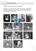 Fotos als Schreibanlass: ein Katzen-Leporello basteln Preview 1