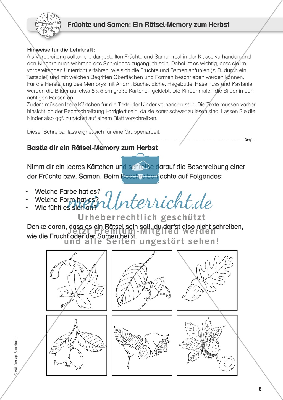Jahreszeitliche Schreibanlässe: Herbst: Memory, Früchte + Samen Preview 1