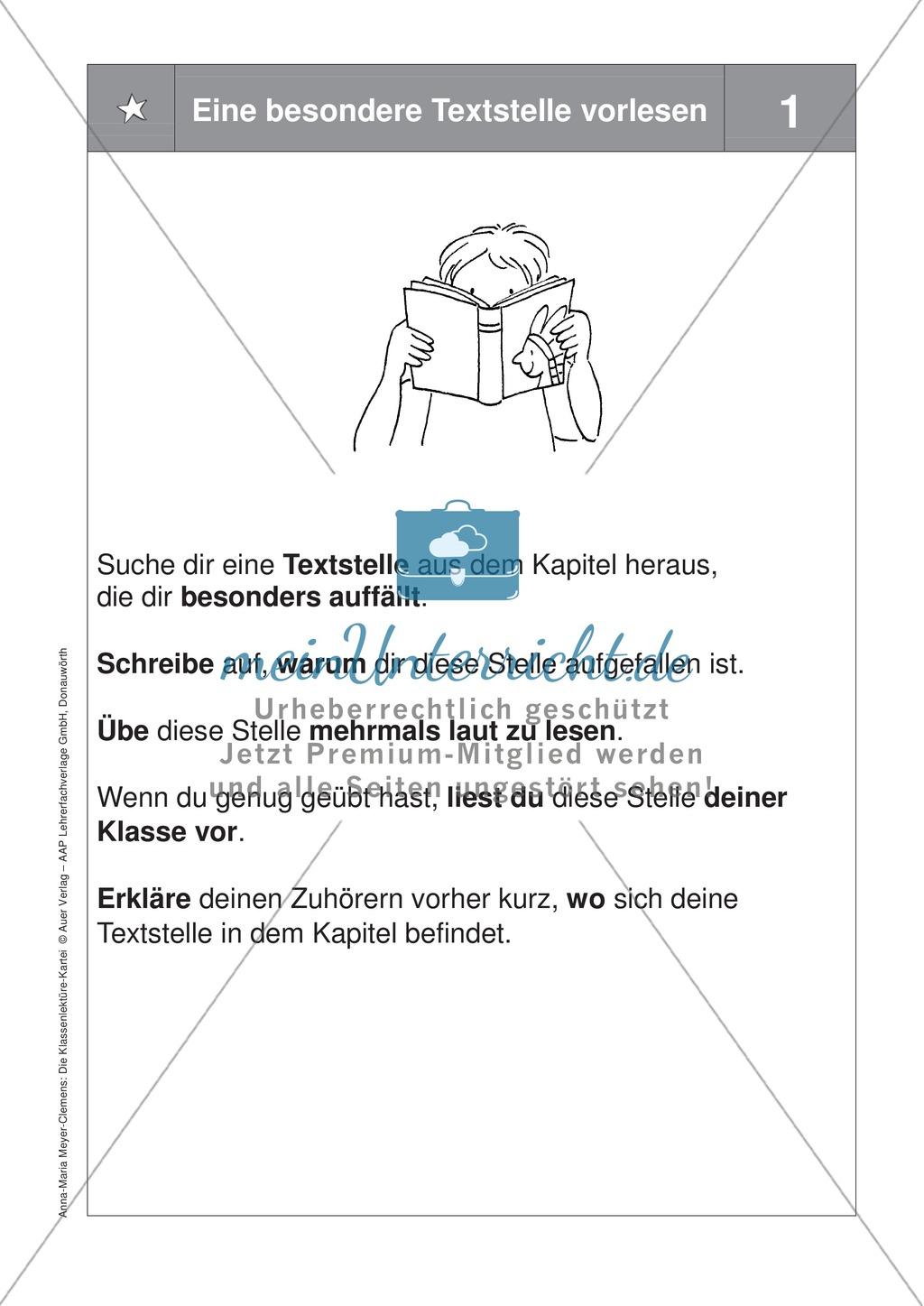 Übungen zur Klassenlektüre: Arbeitskarteikarten zum besseren Verstehen eines Buches + Arbeitsplan und Reflexionsbogen Preview 10