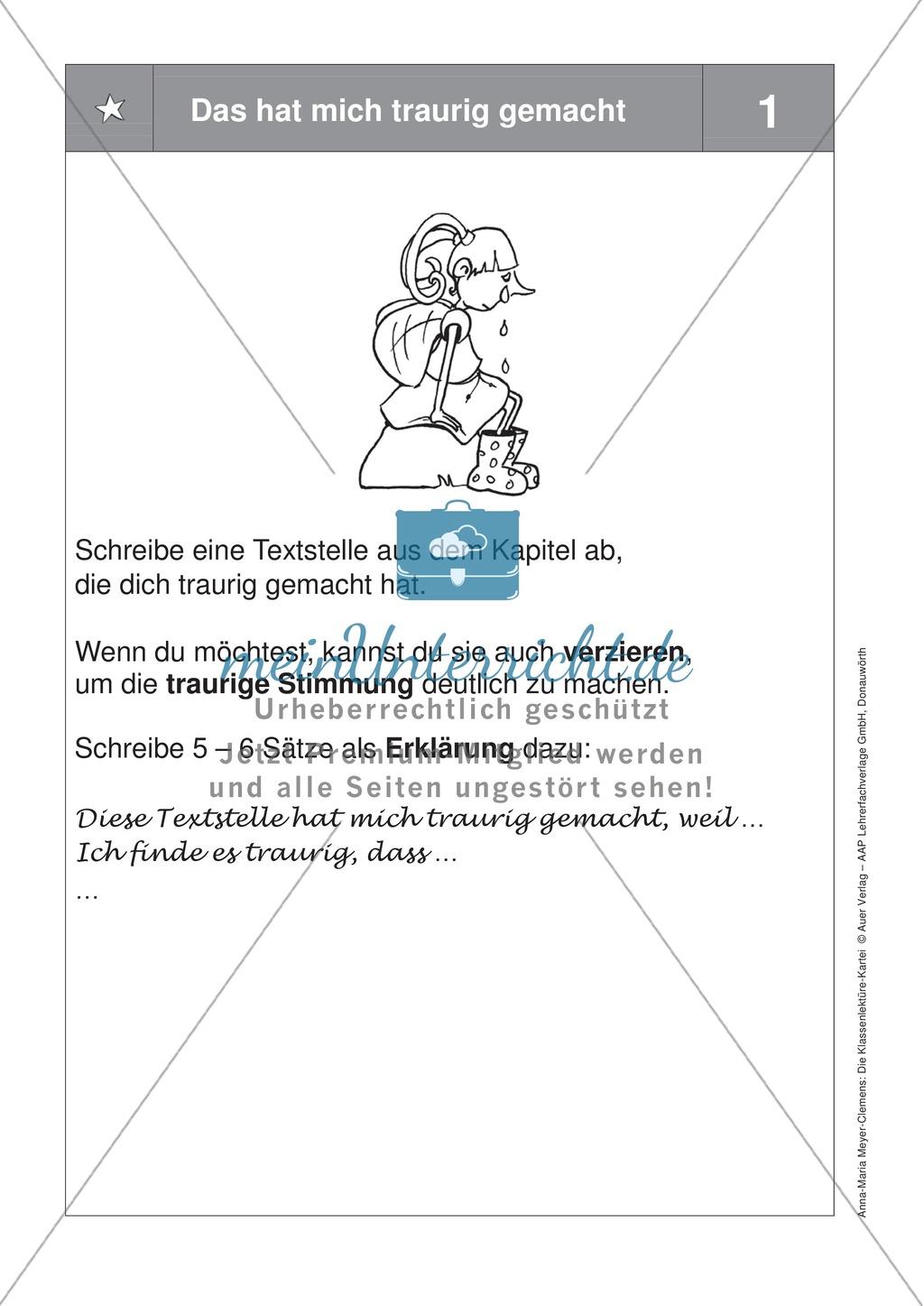 Übungen zur Klassenlektüre: Arbeitskarteikarten zum besseren Verstehen eines Buches + Arbeitsplan und Reflexionsbogen Preview 15