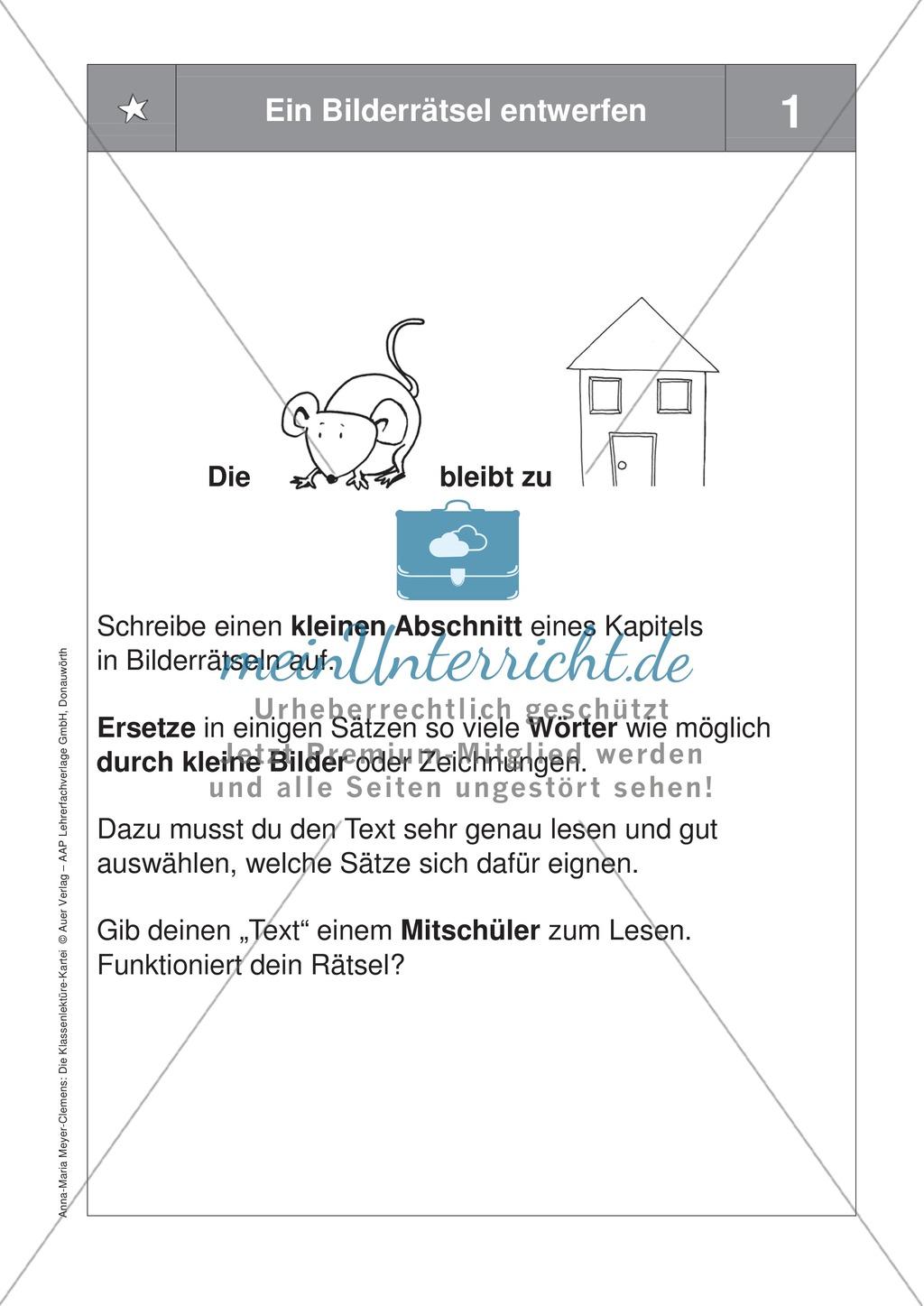 Übungen zur Klassenlektüre: Arbeitskarteikarten zum besseren Verstehen eines Buches + Arbeitsplan und Reflexionsbogen Preview 8