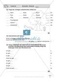 Führerschein für die deutsche Sprache in der 4. Klasse: Stationenübungen für die Bearbeitung des Fahrschultestes. Preview 3