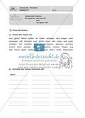 Führerschein für die deutsche Sprache in der 4. Klasse: Stationenübungen für die Bearbeitung des Fahrschultestes. Preview 7