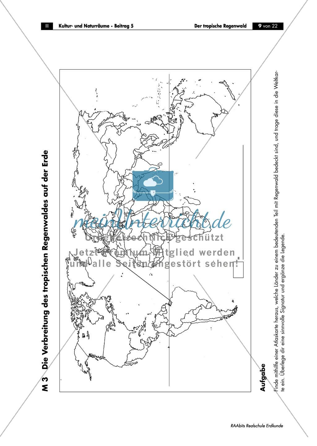 Der tropische Regenwald: Räumliche Ausdehnung + Verbreitung Preview 2