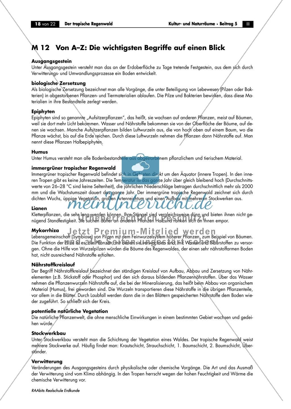 Der tropische Regenwald: Terminologie Preview 0