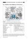 Leben + Wirtschaften im tropischen Regenwald: Regenwald erleben - Indianische Mahlzeit + tropische Pflanzen + Tropenfrühstück Thumbnail 1