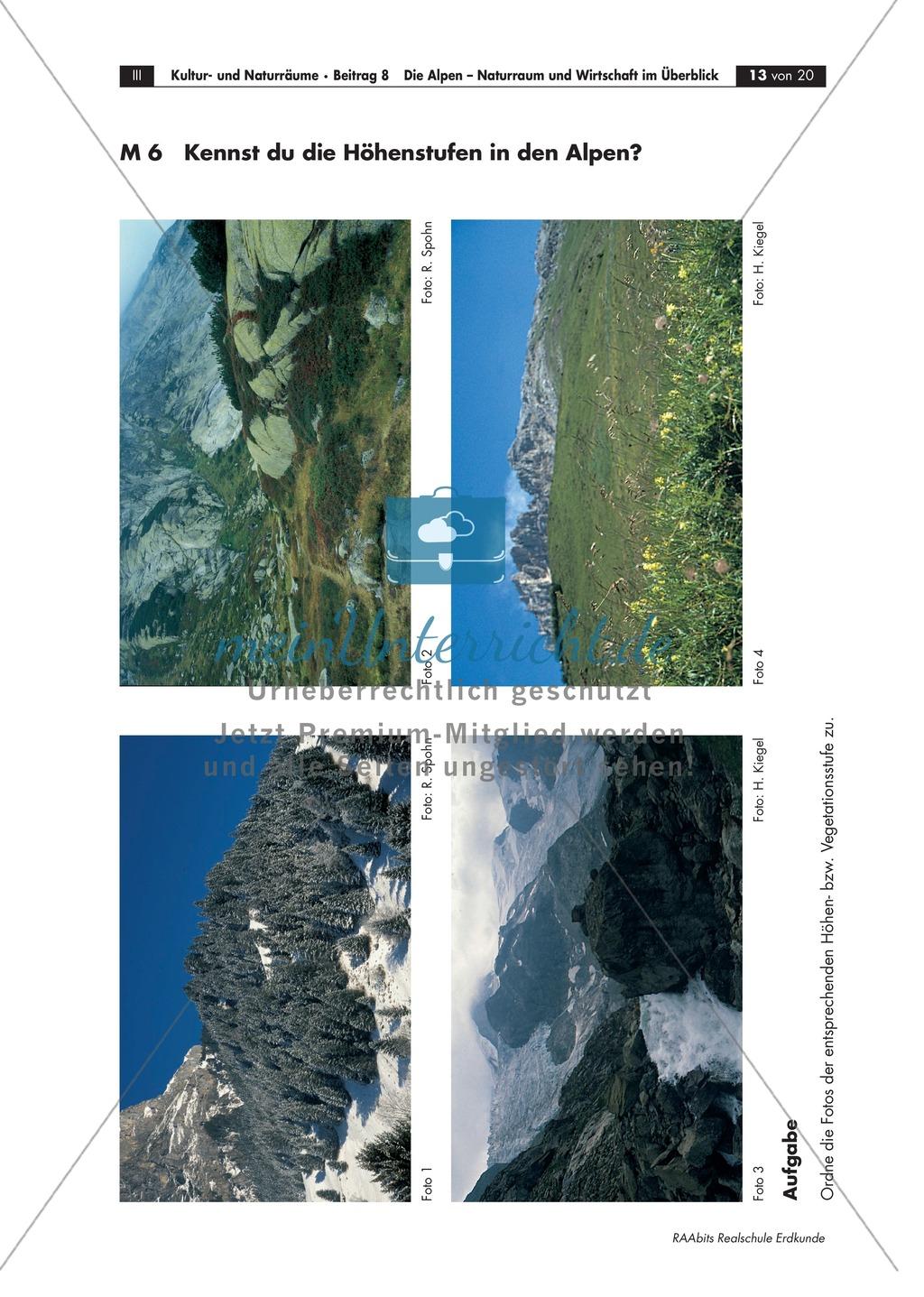 Naturraum + Wirtschaft der Alpen: Klima + Vegetation- und Höhenstufen Preview 4