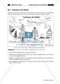 Erdkunde, Naturbedingungen und -ereignisse, Mensch-Umwelt-Beziehung, Umwelt, Umweltschutz, Mensch-Umwelt Beziehung, Ökologische Gefahren, Waldsterben, Wald