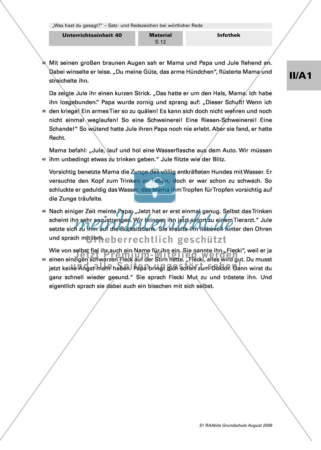 Rede und Satzzeichen bei wörtlicher Rede: Anwendung in einem größeren Zusammenhang: Dialoge und Texte Preview 7