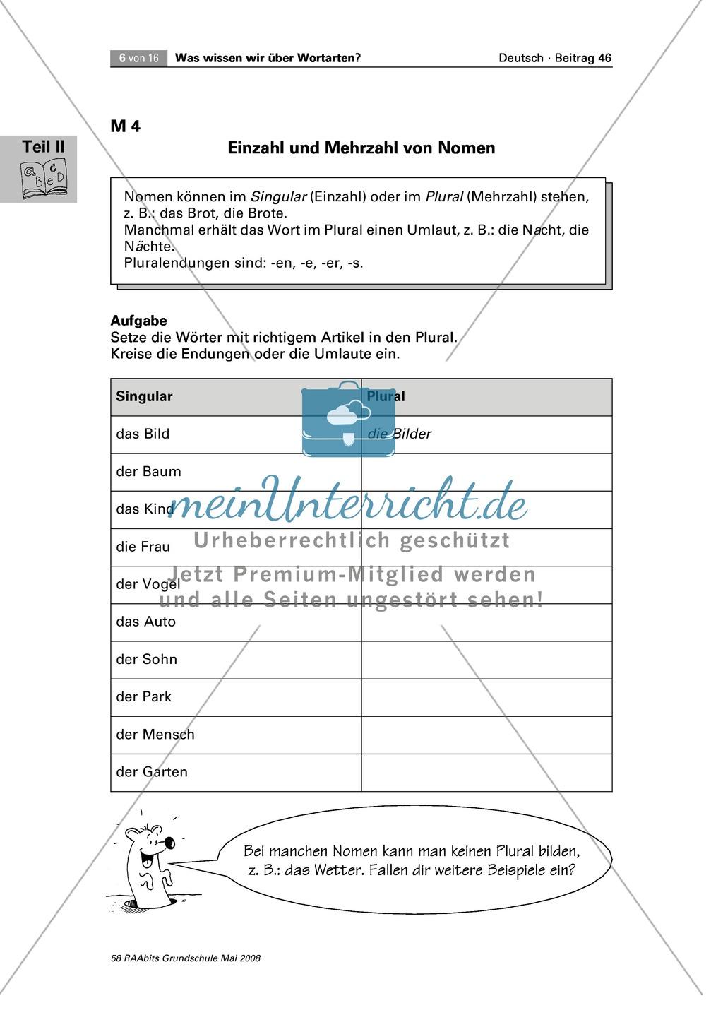 Die Wortarten: Nomen - Schreibweise + Rechtschreibregeln Preview 2