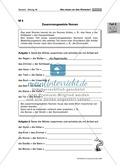 Die Wortarten: Nomen - Schreibweise + Rechtschreibregeln Preview 4