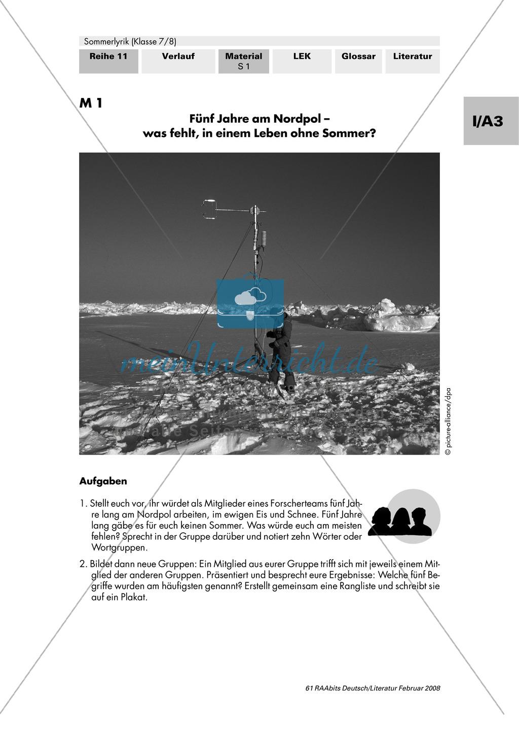 Sommerlyrik: Einführung in das Thema - Fachbegriffe zur Analyse von Gedichten Preview 0