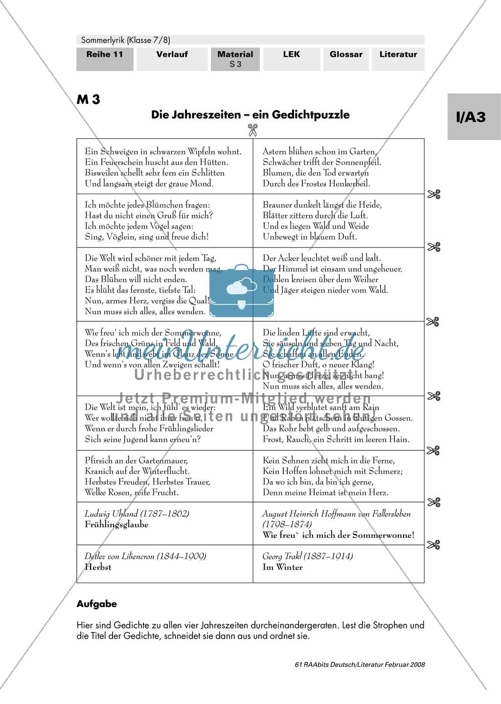 Sommerlyrik: Einführung in das Thema - Fachbegriffe zur Analyse von Gedichten Preview 2