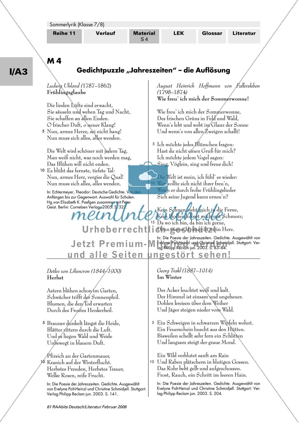 Sommerlyrik: Einführung in das Thema - Fachbegriffe zur Analyse von Gedichten Preview 3
