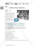 Sommerlyrik: Drei Sommergedichte aus drei Jahrhunderten - Anwendung von Lyrikkenntnissen zu Reim + Rhythmus Preview 8
