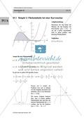 Analysis: Gruppenarbeit zum Thema Flächeninhalte bei Funktionenscharen. Mit Beispielen, Aufgaben und Lösungen. Preview 2
