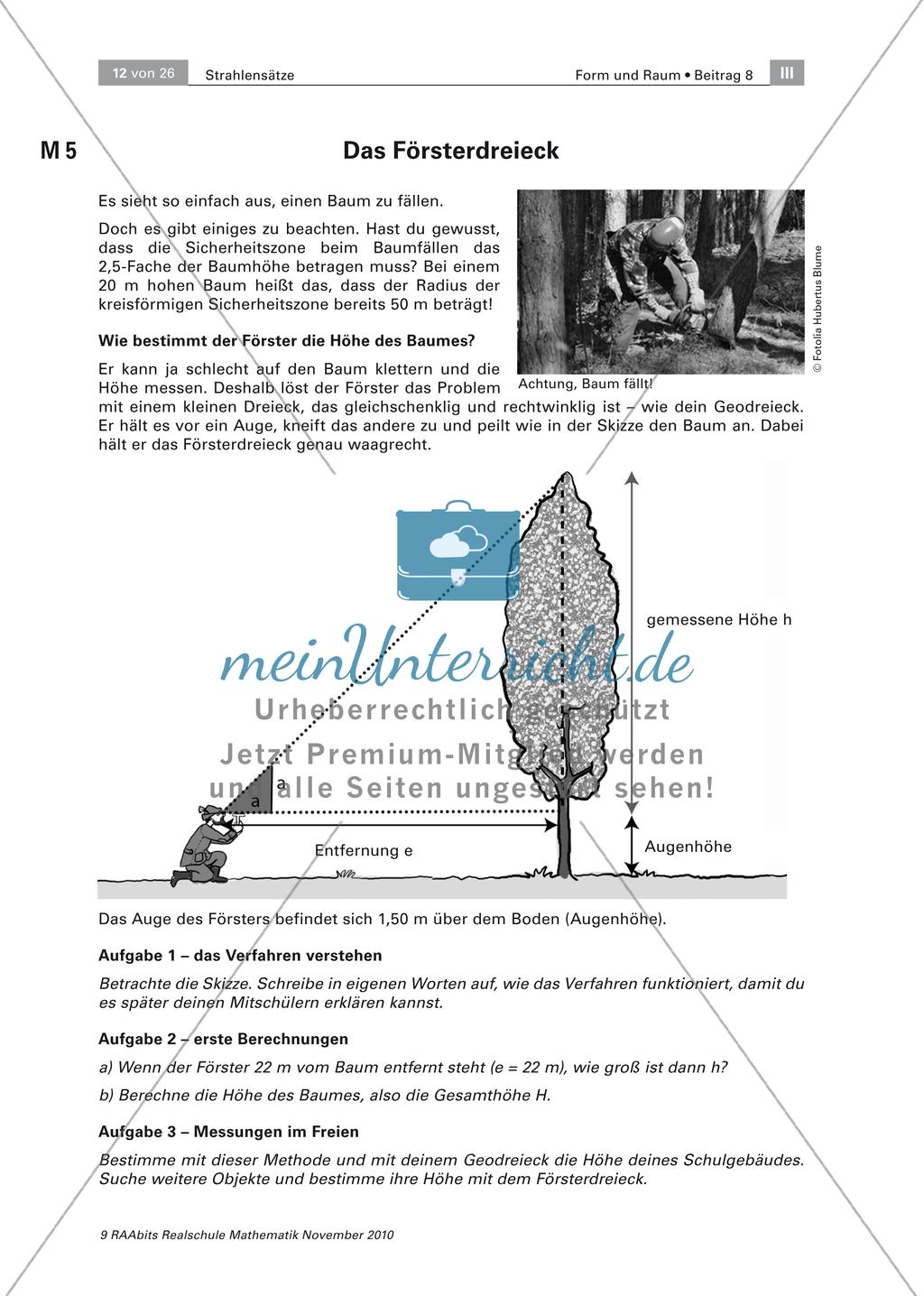 Anwendungsbeispiele Strahlensatz - Bestimmung der Baumhöhe ...