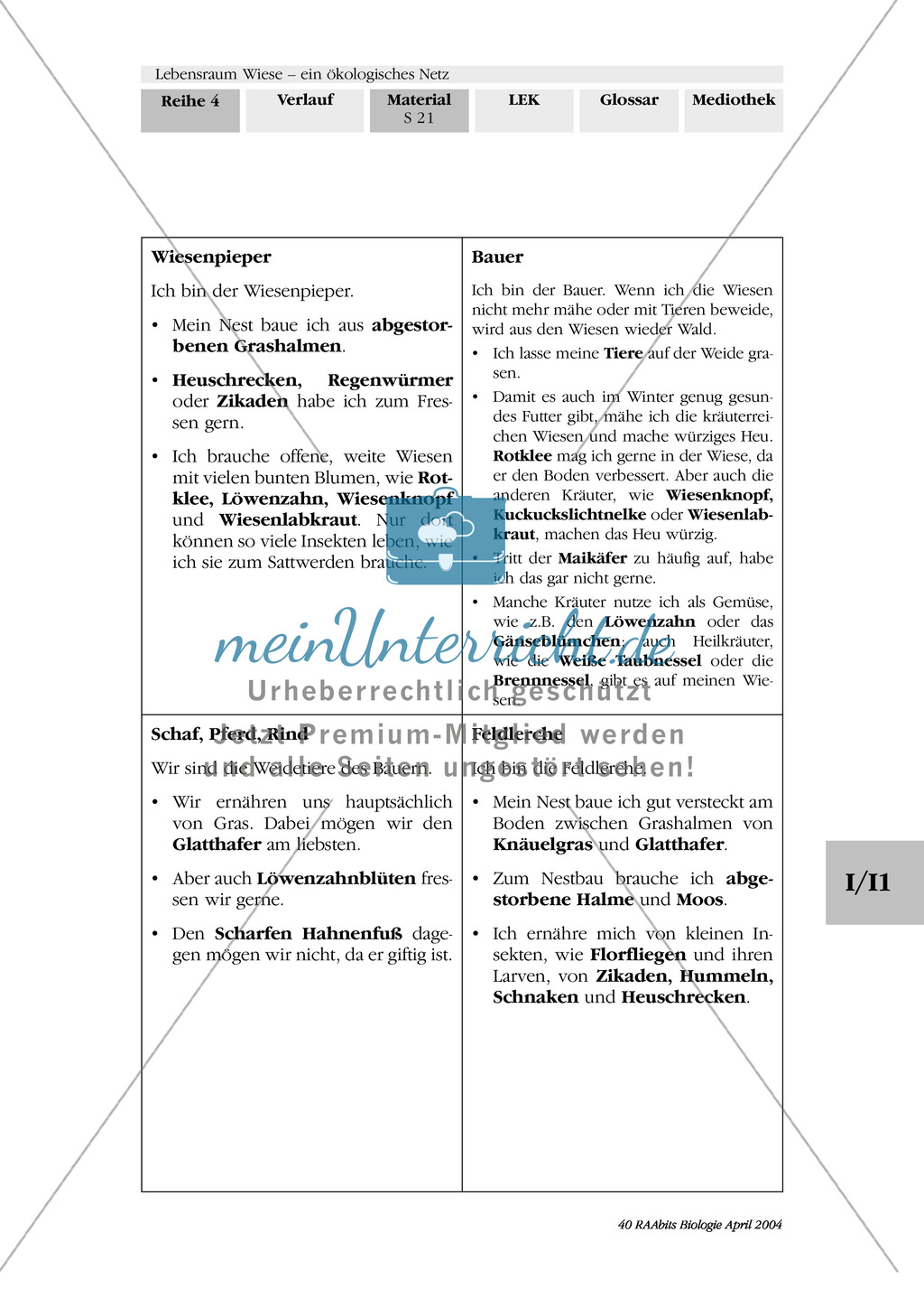 Lebensraum Wiese: Das ökologische Netz einer Wiese - Text- und Bildkarten Preview 17