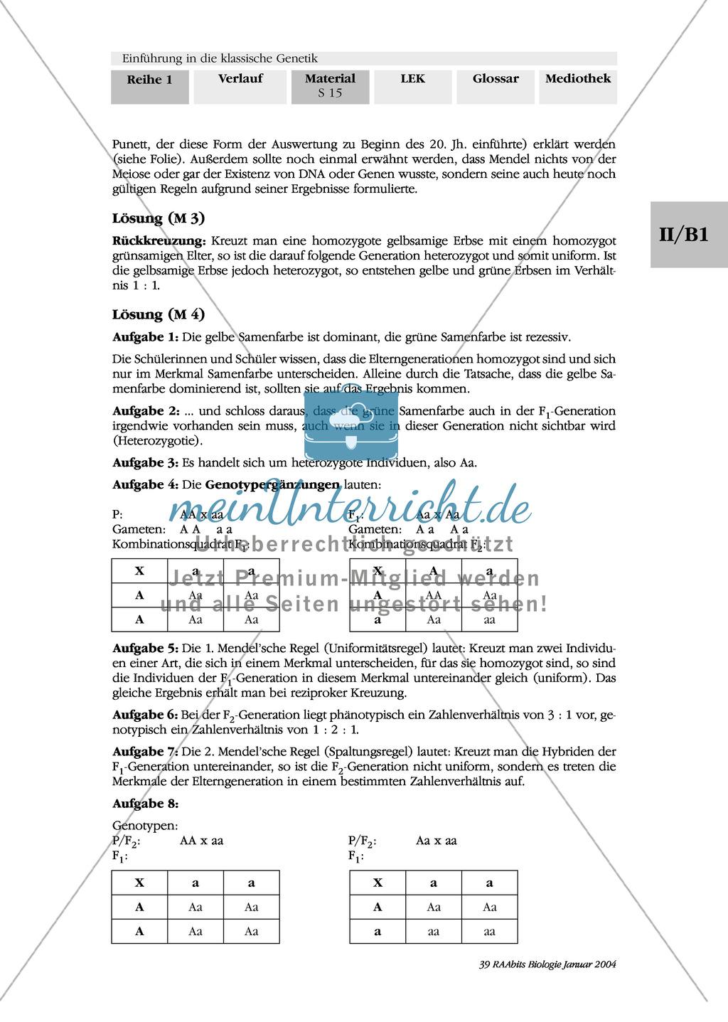 Klassische Genetik: Mendel`sche Regeln - Begriffe, Regeln, Kodominanz Preview 11