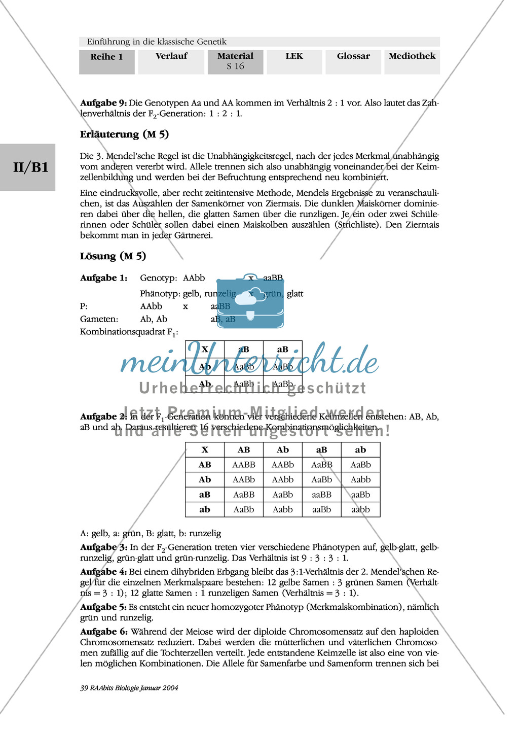 Klassische Genetik: Mendel`sche Regeln - Begriffe, Regeln, Kodominanz Preview 12