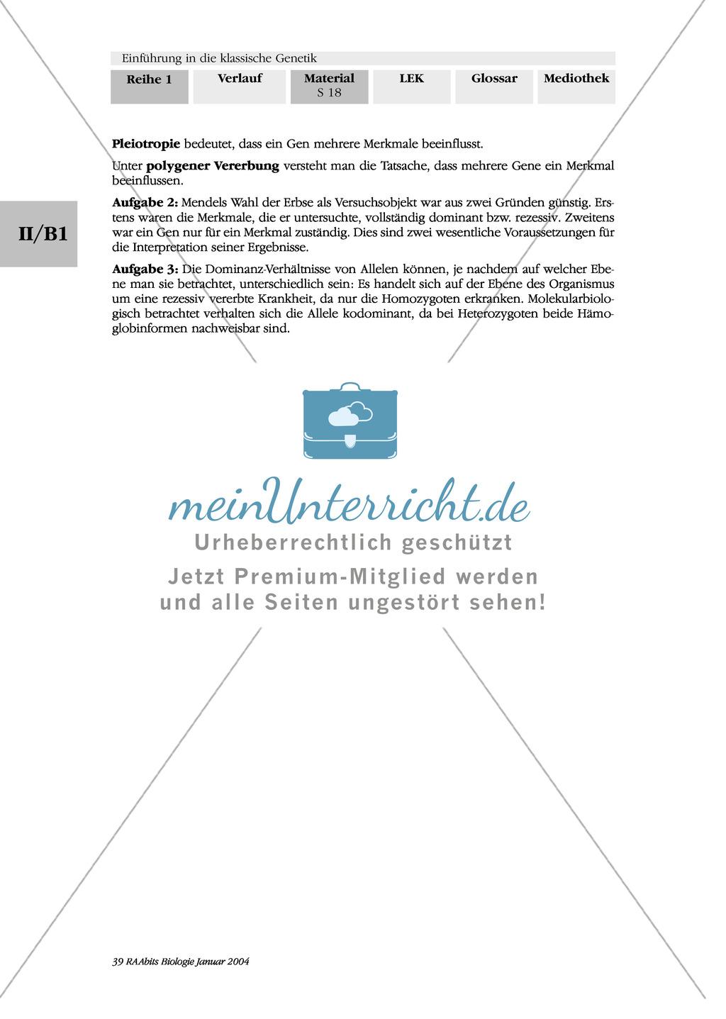 Erfreut Mendel Und Vererbung Arbeitsblatt Antworten Bilder - Super ...